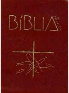 Bíblia de Aparecida – Média de zíper marrom